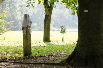 Photo: Szoboravatás előtt a Vácrátóti Arborétumban