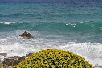 Photo: Primavera a Zambrone,Calabria.