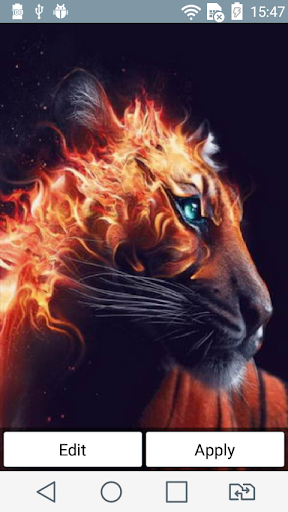 Red-hot tiger live wallpaper