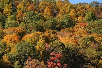 Photo: 191 - Sunday - 10-10-2010 Warwick, NY