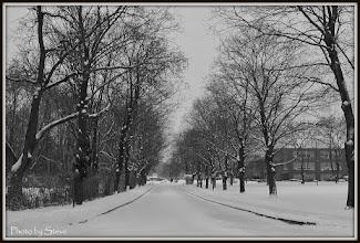 Photo: PVHS Driveway