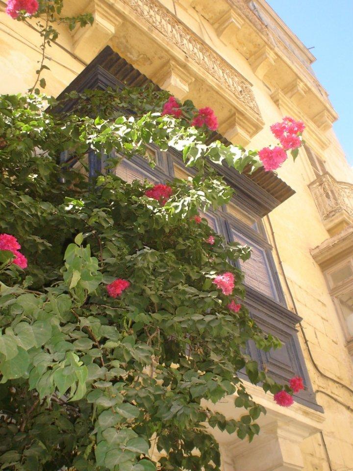 Balconi maltesi di VioliPaola