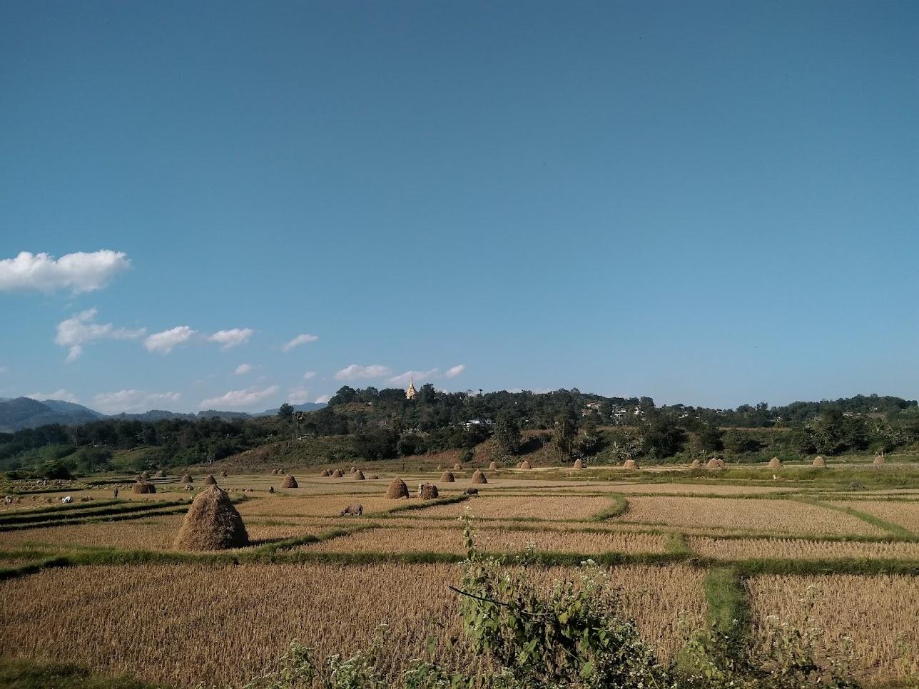 ミャンマーの田園風景