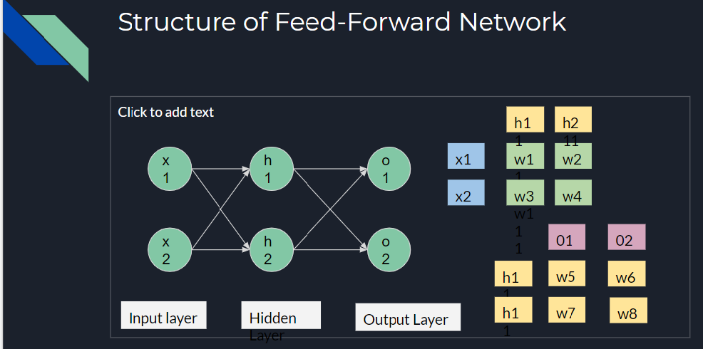 Structure of Feed-Forward Network