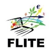 FLITE CCD Assistant