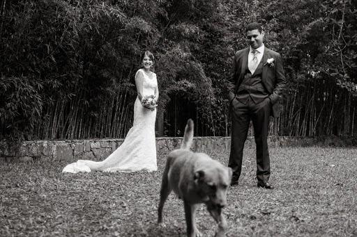 Fotógrafo de bodas Pilar Rangel (pilarrangel). Foto del 14.01.2015
