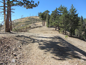 Photo: Neading north approaching the official beginning of Hawkins Ridge Trail