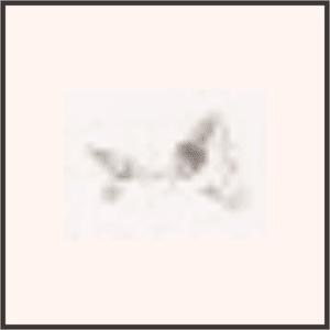 金装飾のウサ耳