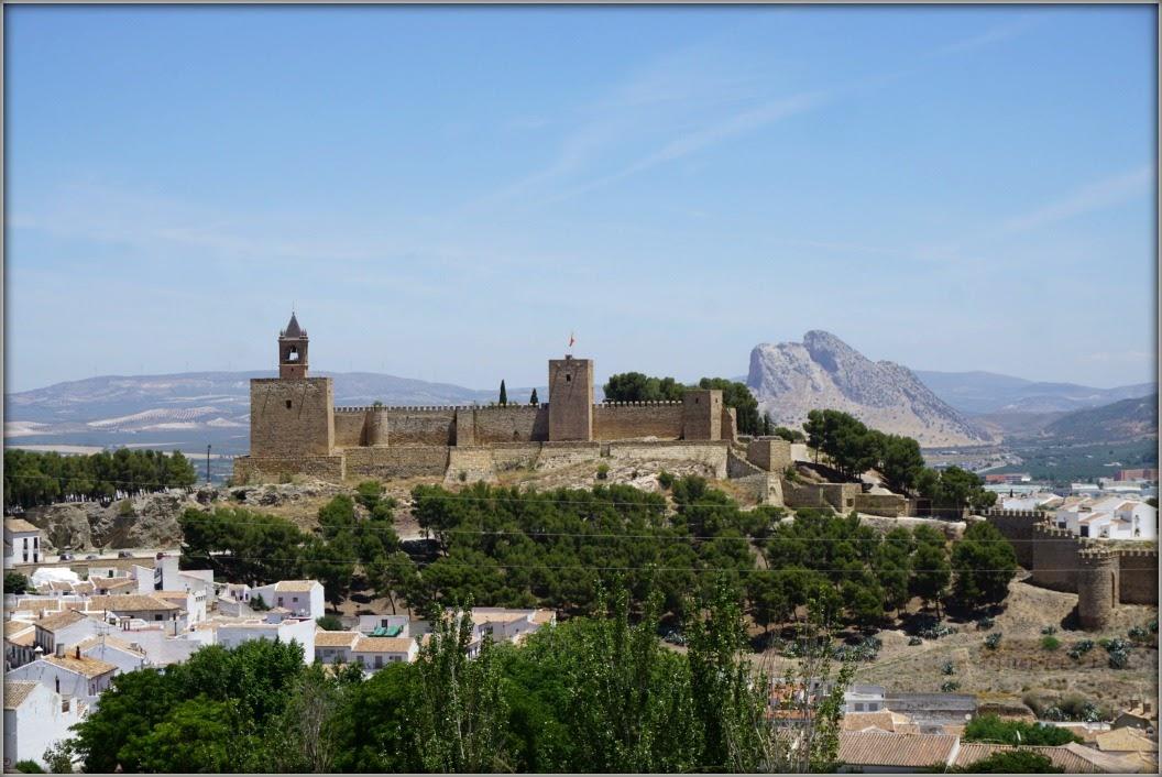 Июньская Андалусия: солнечная, яркая, цветущая...
