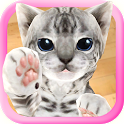 3D Cute Cat Live Wallpaper icon