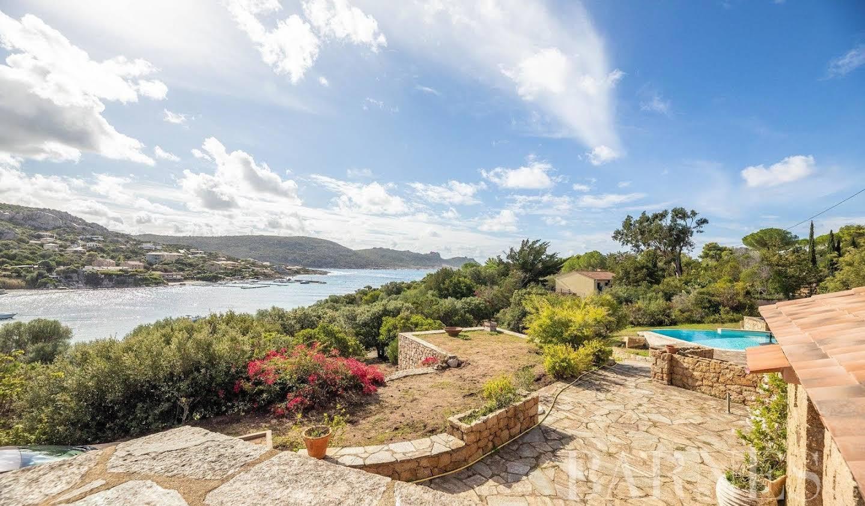 Maison avec piscine Sartene