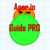 Guide to Agar.io skins
