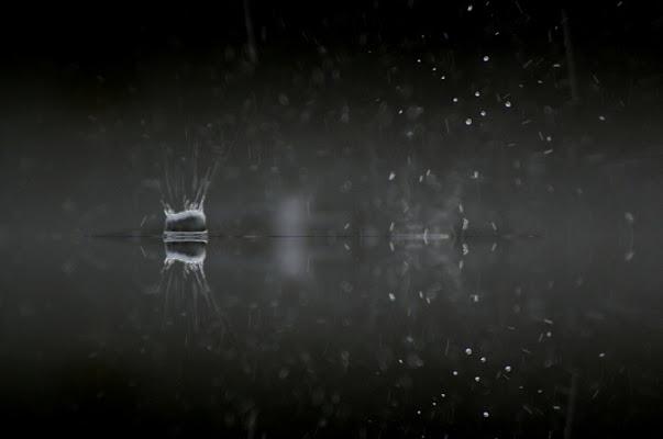 Pioggia di canebisca