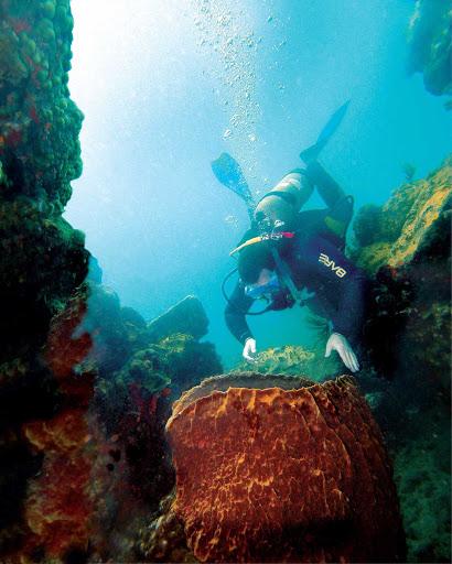 Montserrat-scuba - Scuba diving off Montserrat's northwest coast.