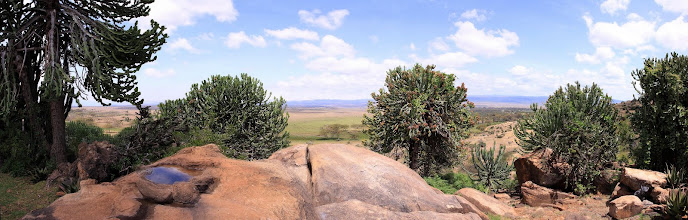 Photo: View from Ian Craig's home, overlooking Lewa.
