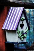 Photo: I'm sharing this shot with the newly formed #PurpleCircle , unofficially curated by myself, +Sinead Sam McKeown +Craig Szymanski and +Alexis Coram :)  What can I say about this shot? Well, it has two things I'm pretty crazy about (1) purple and (2) birdhouses.  So for all the birdhouse haters out there, I'm going to list 5 reasons why I have a thing for birdhouses:  1) Birdhouses contain open secrets. Through a tiny hole lurks a family nestled in a box, but completely obscured from view. Who doesn't love a good secret?  2) Making homes for others is fun. Kinda like extreme-makeover home edition for animals :)  3) Depending on where you put a birdhouse, you can actually direct/control what kind of birds come into your yard. That's awesome for ANY photographer.  4) Did I mention how much fun it is to paint them? Seriously, you get to be a total kid again and pull out your stickers and glue and crap like that. Now—who doesn't remember collecting stickers, huh???  5) Oh and last, the sound of baby birds chirping in the spring is well . . . magical.  Oh and I'm dedicating this birdhouse to my fellow birdhouse partner-in-crime +April Gamel who might be, as I type this, posting her very own birdhouse. (Please take a moment to go over to her page and check out her birdhouse if you are so inclined)  So here's to more birdhouse madness!