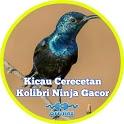Cerecetan Kolibri Ninja Gacor Offline icon