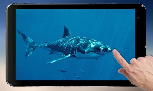 Shark Attack - Magic Touch 2.2 screenshots 4