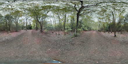 Photo: London - Epping Forest