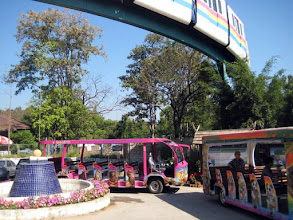 Photo: The recommended hop-on hop-off open-sided buses will prove their worth (20 baht or 57 cents US) getting around this very large and hilly zoo.  A sliver of the monorail shows above.