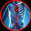 Anatomy - Physiology icon
