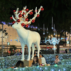 by Koh Chip Whye - Public Holidays Christmas