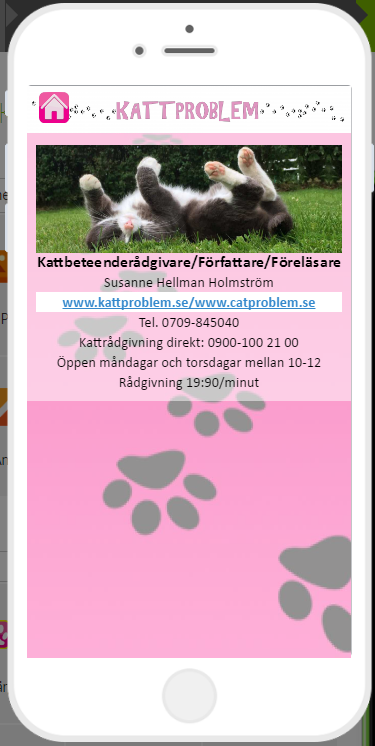 Kattproblem- screenshot