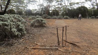 Photo: A famous cricket pitch