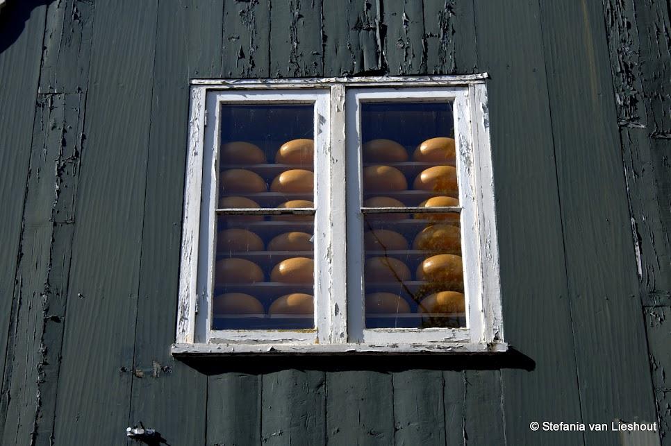 Edam kaas rondje IJsselmeer