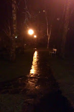 Photo: 347 Tuesday 13.12 - Glemmen Graveyard, Fredrikstad