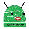 Saymultilanguage and Diagnose2 icon