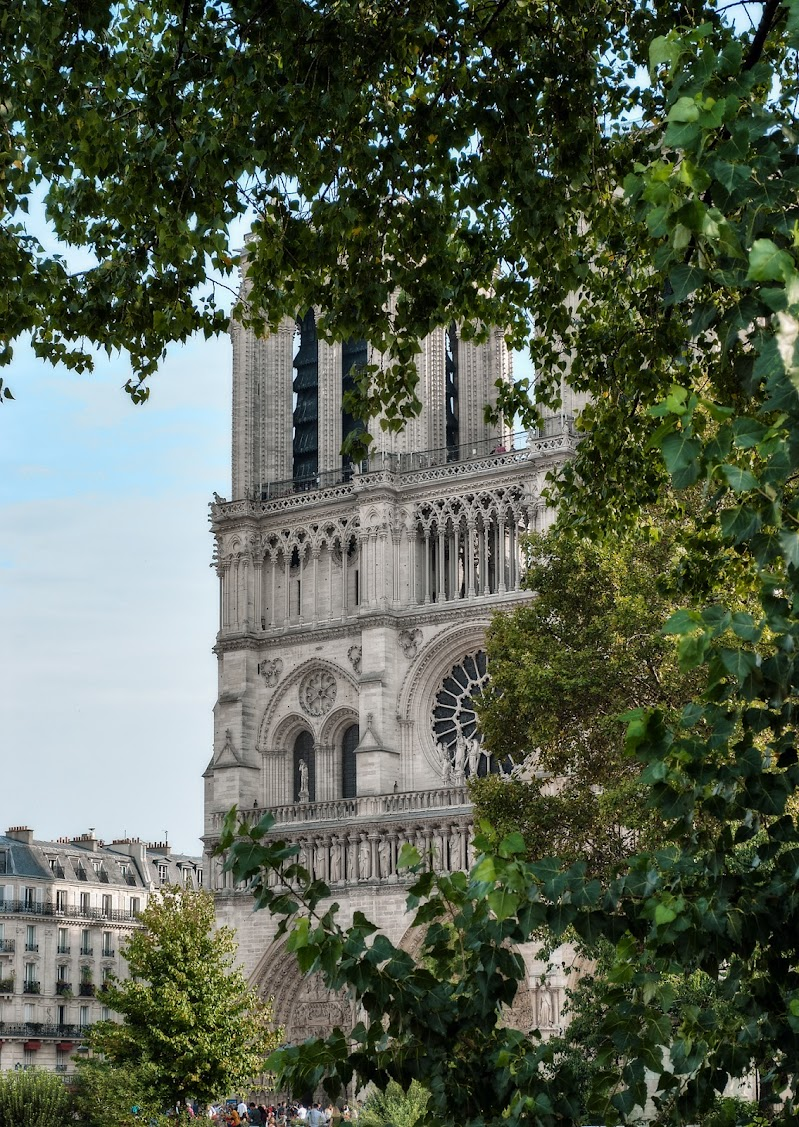 Notre-Dame de Paris. di Domenico Lacava