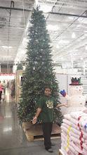 Photo: Kaleya tries to convince us we need this Christmas Tree