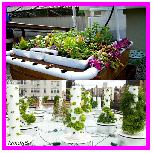 Hydroponic System Designs Android APK Download Free By Kamiati
