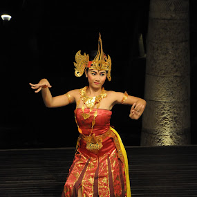 Bali Dancer by Daniel Kong - People Musicians & Entertainers ( bali, colorful, cultural, lady, dancer,  )