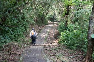Photo: 右側是通往汐平公路的叉路口