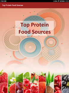 High Protein Diet Sources Food Screenshot Thumbnail