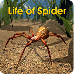 Life of Spider for PC and MAC