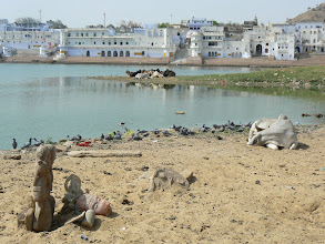 Photo: 22. Pushkar