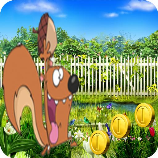 Crazy Squirrel Adventure Game