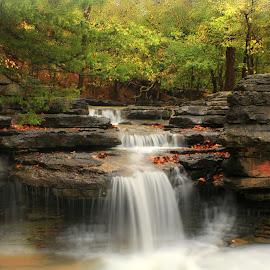NATURAL SERENITY by Dana Johnson - Landscapes Waterscapes ( waterfalls, waterscape, cascade, fall, falls, forest, landscape, rocks )