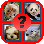 Guess the Celebrity: Animal