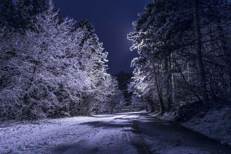 Notte bianca di cs