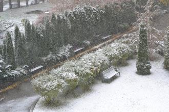 """Photo: Pierwszy śnieg w tym """"sezonie"""" w Warszawie"""
