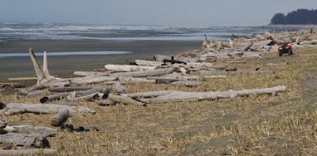 Photo: Yakutat beach