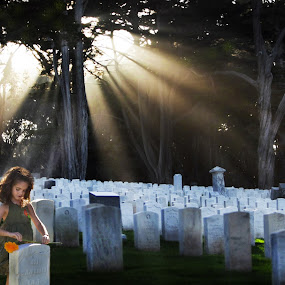 Mourning Light by Lee McLaughlin - News & Events Weather & Storms ( presidio, spirits, graves, memorial day, cemetery, dramatic, young girl, san francisco, flower, military )