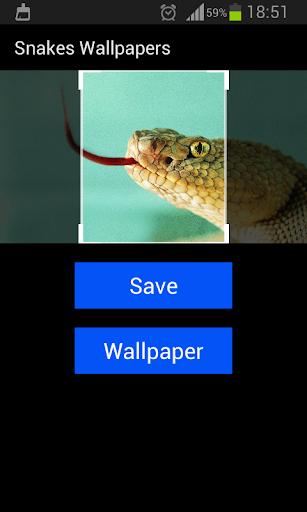 個人化必備免費app推薦 ヘビの壁紙線上免付費app下載 3C達人阿輝的APP