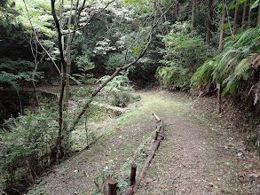 下山路分岐(左下へ)
