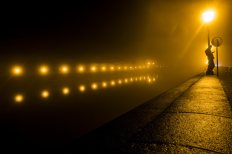 Yellow Fog di gattopisa