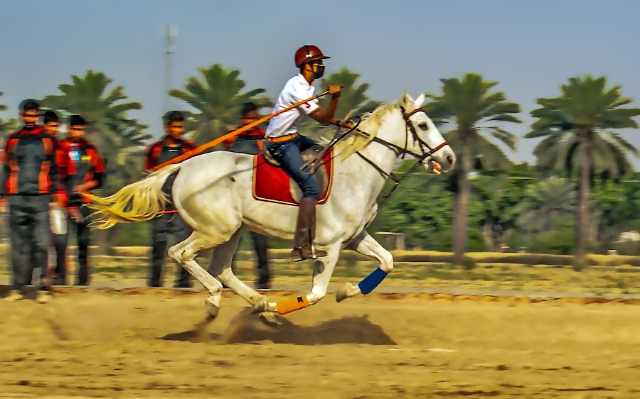 by Mohsin Raza - Sports & Fitness Other Sports